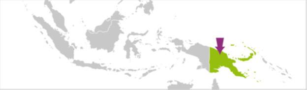 Proyecto internacional de Protección de los bosques de April Salumei en Papua Nueva Guinea